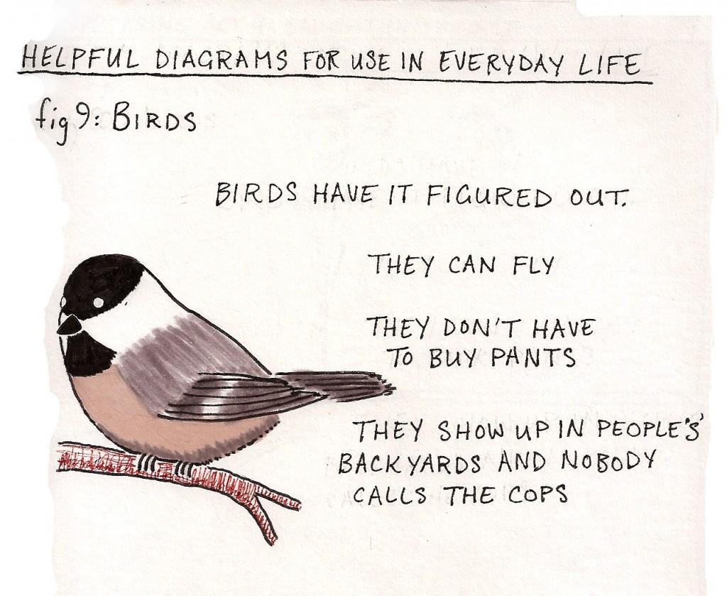 Help Dia 9 Birds